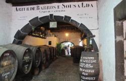 Barros winery 2 250x160