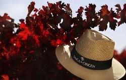 Finca hoed 250x160