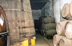 Infantado winery 250x160