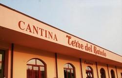 Terre del Barolo wijnhuis 250x160