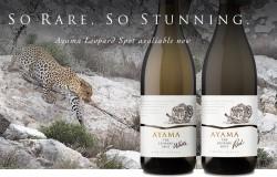Ayama Winery 250x160