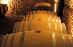 Jean Max wijnkelder 250x160