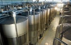 Medievo winery 2 250x160