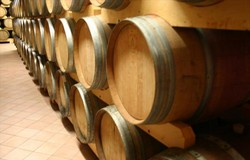 Terre del Barolo wijnkelder 250x160