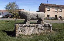 toro d piedra 250x160