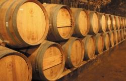 vino alex Bodega 250x160